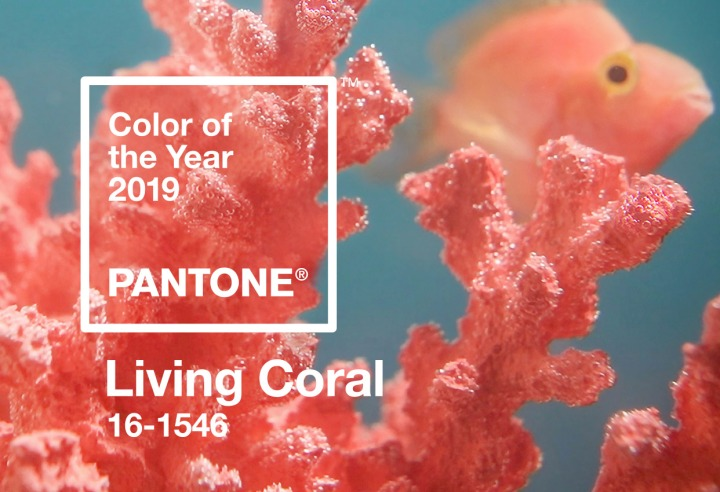 pantone color of the year2019 living coral